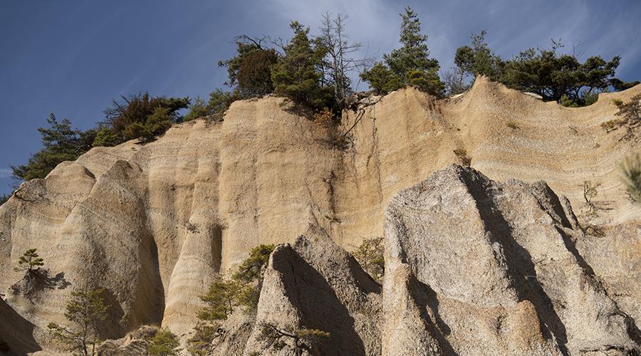 東山の畑の裏に露出する地層。およそ2000万年前から500万年前は海の底だった一帯が地殻変動により長い年月をかけて隆起したもの